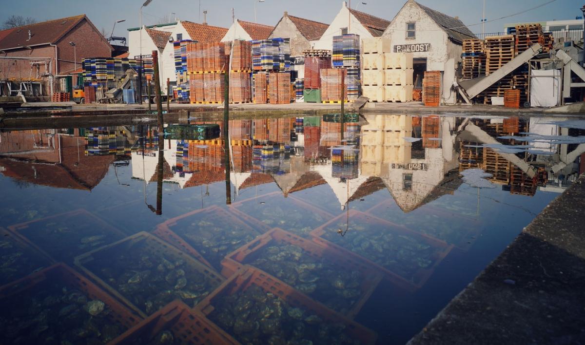 Foto Yerseke Vakantiehuis Genieten Zeeland